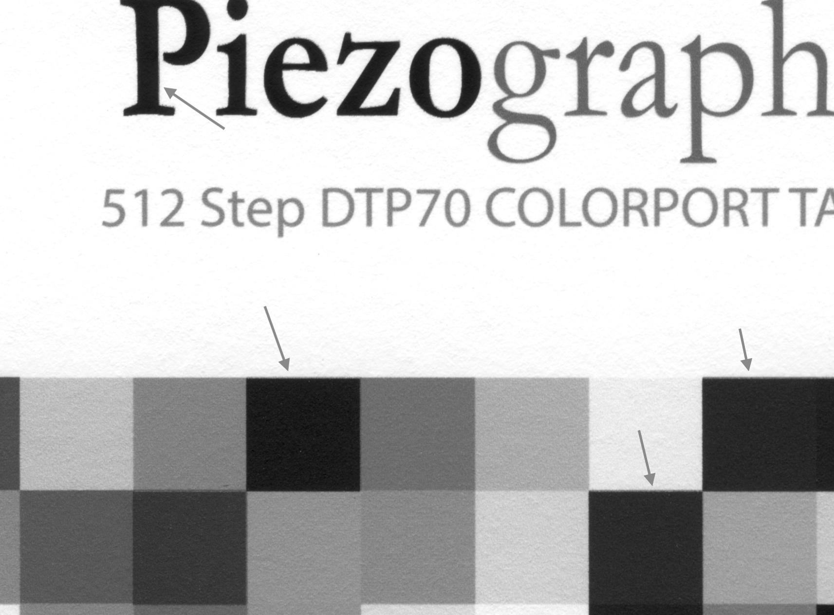Piezo512Target_Scan_Crop2